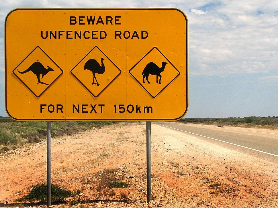 Australia animal warning sign