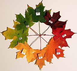 a circle of 8 maple-like leaves arranged in a colour wheel of autumn tones, with labels of pantone colour numbers matching each leaf