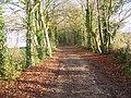 Avon Valley Path near Nunton - geograph.org.uk - 1170212.jpg