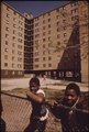 BLACK YOUNGSTERS OUTSIDE THE STATEWAY GARDENS HIGHRISE HOUSING PROJECT ON CHICAGO'S SOUTH SIDE. THE COMPLEX HAS EIGHT... - NARA - 556163.tif