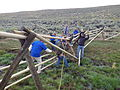 BLM Wyoming Employees and Volunteers Replace Crookston Ranch Fencing (15163291400).jpg