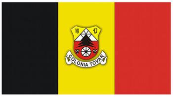 Bandera Colonia Tovar