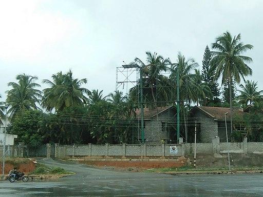 Bangalore billboard hoarding tree IMG20180910112841
