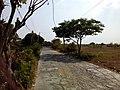 Barangay's of pandi - panoramio (87).jpg