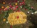 Batea con mazorcas de maíz.jpg