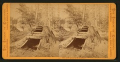 Bath House in the Yosemite (NYPL b11708169-G91F396 012F).tiff