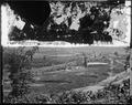 Battlefield of Resaca, Ga. 1864 - NARA - 528906.tif