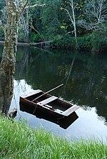 Batuxo en el río Ladra, Club Fluvial de Begonte.jpg