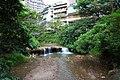 BeiTouXi ChunLuHuang 02.jpg
