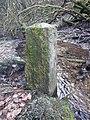 Belgisch-Luxemburgischer Grenzstein Nr. 63a (alt) (2).jpg