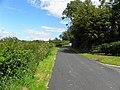 Belmount Road - geograph.org.uk - 2483576.jpg