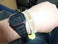 Bestival 2010 wristband.jpg