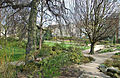 Bethmannpark-ffm012.jpg