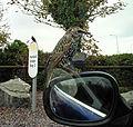Bexhill (22092773364).jpg