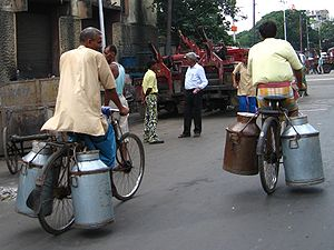 Milk churns being carried on bicycles, Kolkata...