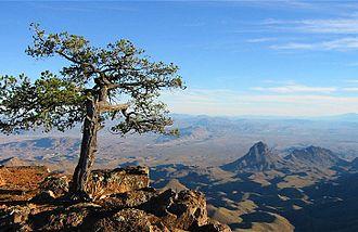 Chisos Mountains - Image: Big Bend Texas