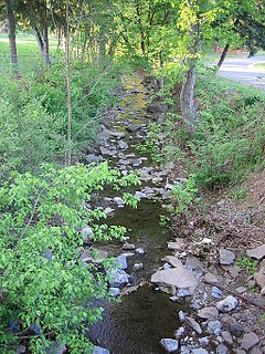 Big Run (South Branch Potomac River tributary) river in the United States of America