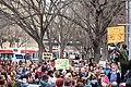 Bill C-51 Protest.jpg