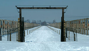 Auschwitz-Birkenau Memorial and Museum - Image: Birkenau Walk of Death
