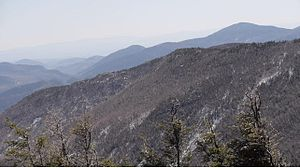Cascade Mountain (New York) - Image: Blueberry Moutain (south east) view from Cascade Moutain (NY)