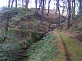 Bolehill Clough - geograph.org.uk - 54842.jpg