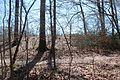 Boones Mounds, Arkansas DSC 0854 (8564768083).jpg