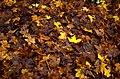 Borjomi Yellow (8208647921).jpg