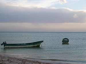Botes de pesca - Celestún, Yucatán.JPG