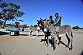 Boys on donkeys, Andriesvale, Kalahari, Northern Cape, South Africa (20354704138).jpg