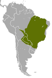 Brazilian Lesser Long-nosed Armadillo area.png