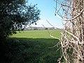 Bretton farmland - geograph.org.uk - 38802.jpg