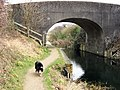 Bridge 5, Wendover Arm, Drayton Beauchamp, looking East - geograph.org.uk - 1183509.jpg