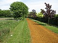 Bridleway - geograph.org.uk - 1326399.jpg