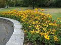 Britzer Garten Rundgang 10.jpg