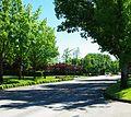 Brookwood Parkway with Dawson Creek Drive light - Hillsboro, Oregon.JPG