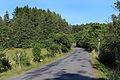 Budislav, Borek, road No 359.jpg