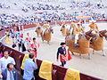 Bullfighting in Madrid (4140759145).jpg