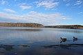 Burke lake park 018.JPG