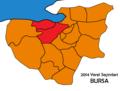 Bursa2014yerel.png
