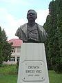 Bustul lui C. Dobrescu - Argeș (2).JPG