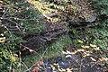 Buttermilk Falls - panoramio (11).jpg