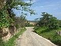 CAMINO A LA COSTA - panoramio.jpg