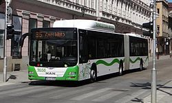CNG articulated bus.jpg