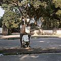 COLLECTIE TROPENMUSEUM Krantenverkopers op straat in Brazzaville TMnr 20031817.jpg