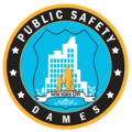 CPPO DAMES Patch 2015.png