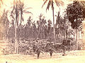 Cakranegara destructions 1894.jpg