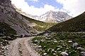 Camino de Sotres a Áliva - panoramio (5).jpg