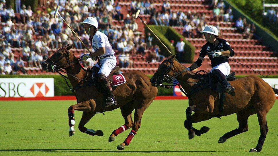 Campeonato Argentino de Polo 2010 - 5237109478 e7ed034169 o