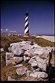 Cape Hatteras National Seashore, North Carolina (17e27abb-c561-4f01-a86c-f94ead02e7f2).jpg