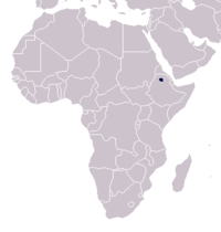 Range of the walia ibex (in black)